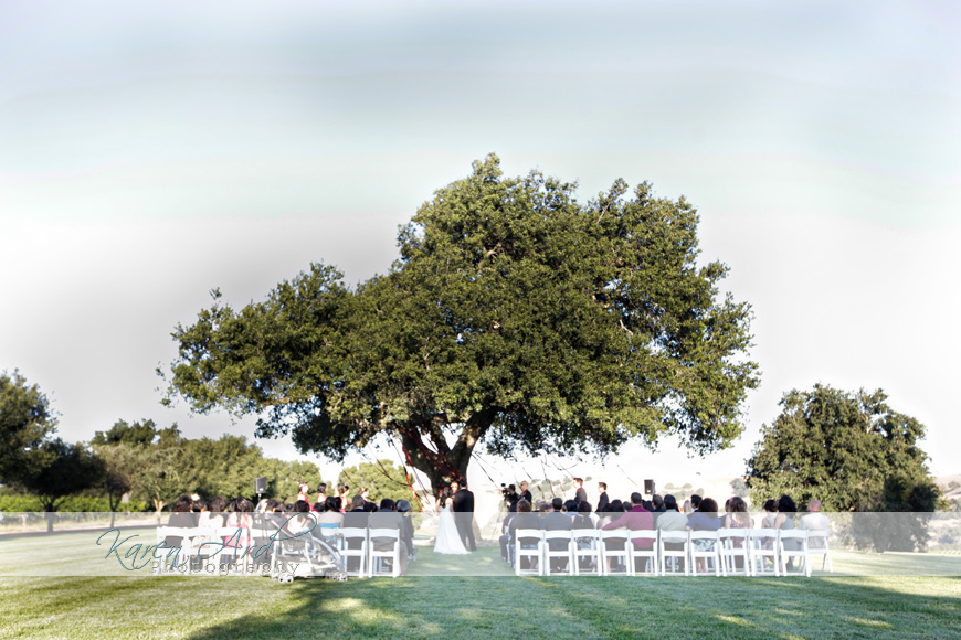 firestone_vineyard_wedding.jpg