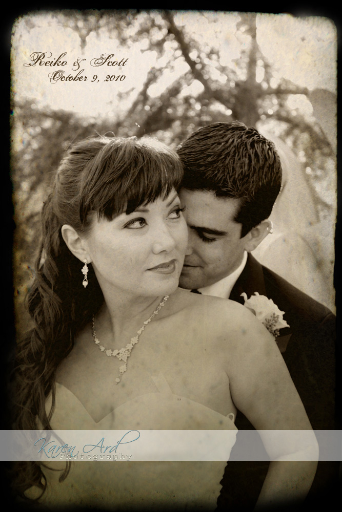 vintage wedding portraits.jpg